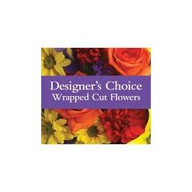 Our Designer's Choice