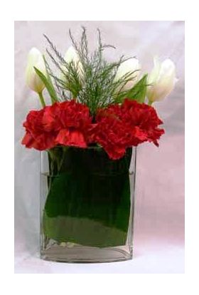 Tulips & Carnations